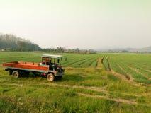 Lastbil för lantgård i Thailand Arkivbilder