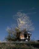 Lastbil och träd royaltyfri foto