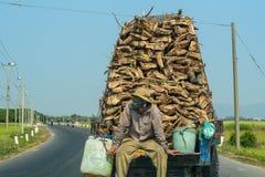 Lastbil som bär träjournaler arkivbilder
