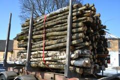 Lastbil som transporterar den wood bunten för timmer Royaltyfria Bilder