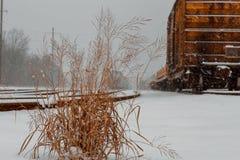 Lastjärnvägbransch i vinter Järnväg lagring för vagnstransport fortfarande Royaltyfri Fotografi