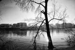 Lastkahn und die Seine in Paris-Vorort stockbild
