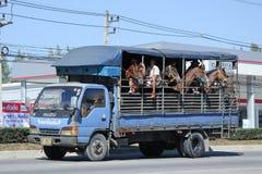 Lastlastbil av den Romrun lantgården Fotografering för Bildbyråer