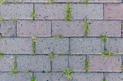 Lastra per pavimentazione Fotografia Stock Libera da Diritti