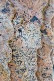 Lastre del granito Immagini Stock