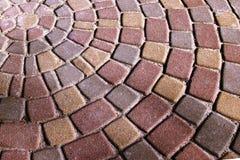 Lastre per pavimentazione circolari variopinte del fondo Lastre per pavimentazione, presentate nei cerchi nel parco della città d fotografia stock