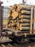 Lastwagen geladen mit Holz Stockbild