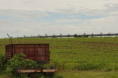 Lastwagen und Trockengestelle Lizenzfreie Stockfotografie