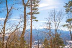 Lasu i Fuji góry tło Fotografia Stock