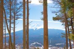 Lasu i Fuji góry tło Zdjęcia Royalty Free