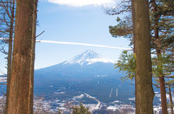 Lasu i Fuji góry tło Obrazy Stock