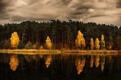 Lasu i krajobrazu dowcipu odbicie na jeziorze fotografia royalty free