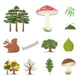 Lasu i natury kreskówki ikony w ustalonej kolekci dla projekta Lasowego życia symbolu zapasu sieci wektorowa ilustracja royalty ilustracja
