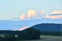 Lasu i nieba natury sceneria Zdjęcie Stock