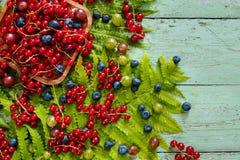 Lasu i ogródu jagody na starym drewnianym stole na widok Zdjęcia Royalty Free