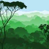 lasu krajobraz Zdjęcia Stock