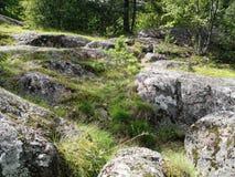 Lasu krajobraz z Dużymi starymi kamieniami fotografia stock