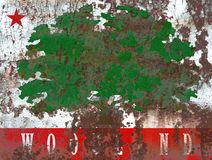 Lasu miasta dymu flaga, Kalifornia stan, Stany Zjednoczone Ame Obraz Royalty Free