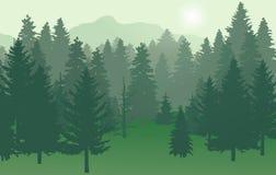 Lasu nr2 zieleń z słońcem ilustracja wektor