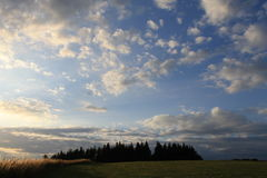 Lasu wzgórze Obraz Royalty Free