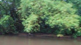 LaSuerte flod arkivfilmer