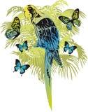 lasy deszczowe Obrazy Royalty Free