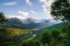 Lasy i góry Obraz Royalty Free