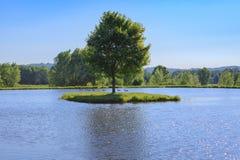 Lat disig sjö för sommardag Arkivfoto