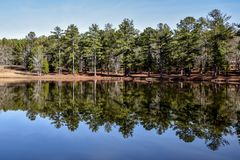 Lat drzewa i niebo odbijaliśmy w jezioro wodzie Fotografia Stock