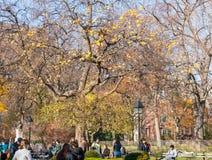 Lat eftermiddag i Manhattan Royaltyfria Foton
