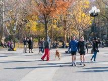 Lat eftermiddag i Manhattan Arkivbild