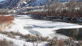 Lat flod på Banff Kanada arkivfilmer
