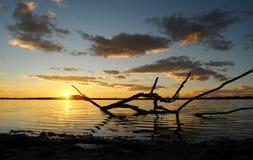 lat lagun Fotografering för Bildbyråer
