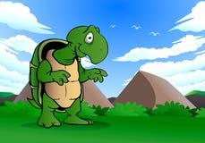 Lat sköldpadda Royaltyfri Bild