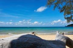 Lat strand på den soliga sommardagen Koh Rong Sanloem ö, lat strand Cambodja Asien fotografering för bildbyråer