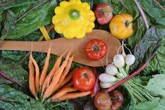 Lat warzywa od Farmer& x27; s rynek obrazy royalty free