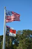 Latać flaga zdjęcie royalty free