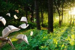 Latać książki w lesie Obrazy Stock