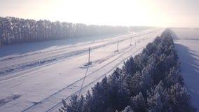 Latać na quadrocopter nad drogą w zimie w lasowym Aero widoku od above zbiory wideo