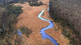 Latać nad mała błękitna rzeka i bagna zdjęcie wideo