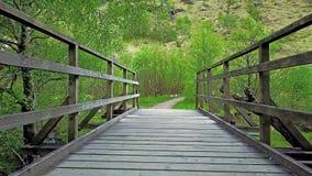 Latać nad mostem w dżungli zdjęcie wideo