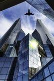 Latać nad nowożytnymi budynkami Zdjęcia Stock