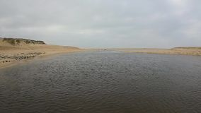 Latać nad rzeką między diunami zbiory