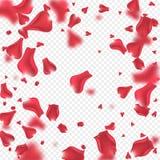 Latać różanego płatka tło Obrazy Royalty Free