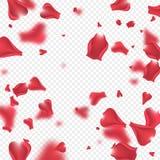 Latać różanego płatka tło Obraz Stock