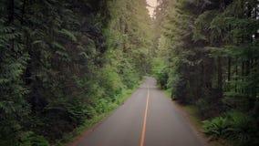 Latać w dół droga przy zmierzchem zdjęcie wideo