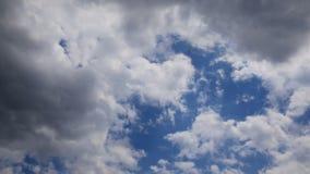 Latać w niebie zapętlał animację od frontowej strony zdjęcie wideo
