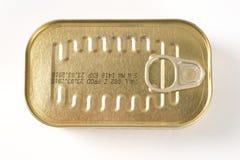 Lata cerrada de sardinas imágenes de archivo libres de regalías