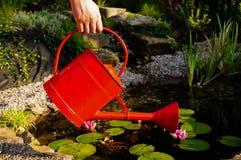 Lata da água vermelha Fotos de Stock Royalty Free