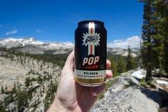 Lata de cerveja do ofício com fundo da região selvagem fotografia de stock royalty free